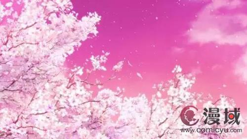 粉紅的櫻花花瓣